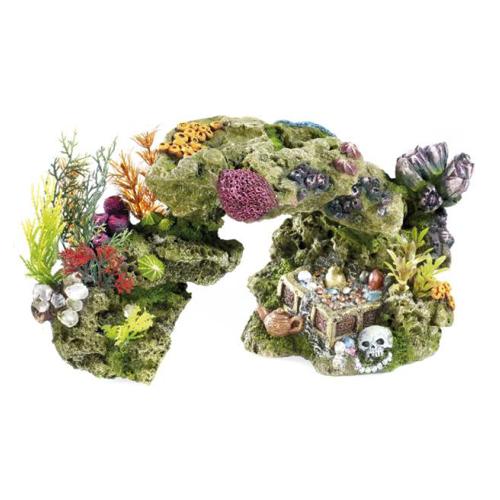 rocas y plantas